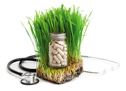 טיפול באלרגיה עם תוספי מזון