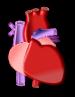 לב כתמונת המחשה למחלות לב