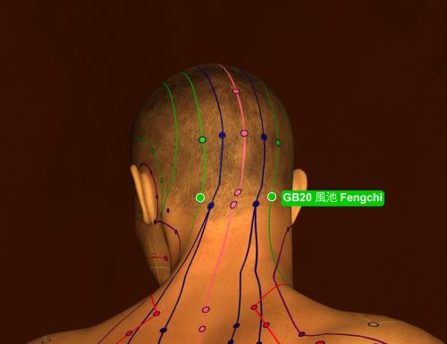 הנקודה gb20 לטיפול בכאבי ראש ומיגרנה